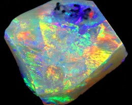 11.55Cts Mintabie opal Rough  WS378