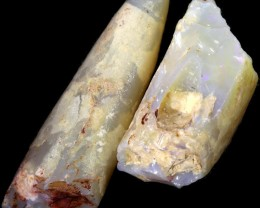 197.85 CTS ROUGH  BELEMNITE FOSSIL-COOBER PEDY [CP2586]