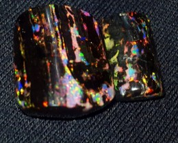 13.00 CRT RARE STUNING SPECIMENT INDONESIAN OPAL WOOD FOSSIL