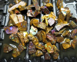 "O/L 300cts. ""65 X ROUGH"" BOULDER MATRIX OPALS."