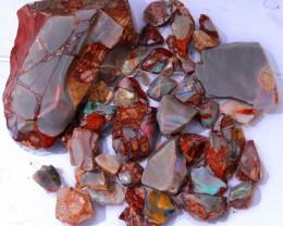 558.80Cts Allans Rise parcel Opal rough WS521