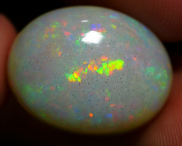 10.00 CRT DARK BASE PRISM HONEYCOMB PATTERN PLAY MULTICOLOR WELO OPAL-