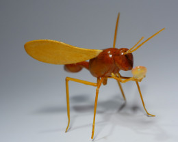THE WASP CARVING INDONESIAN TEAK WOOD WITH BEAUTY COLOR WELO OPAL