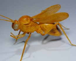 THE WASP CARVING INDONESIAN TEAKWOOD WITH 2 PCS BEAUTY EYE'S WELO OPAL