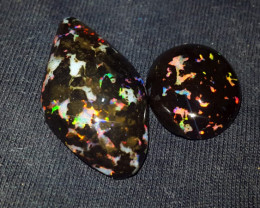 22.00 CRT 2 PCS BEAUTY FLORAL PATTERN PLAY COLOR INDONESIAN OPAL WOOD FOSSI