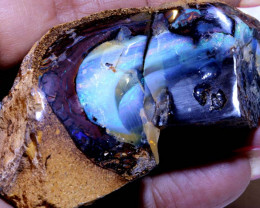 572-CTS  YOWAH OPAL ROUGH   POLISHED  DT-7966