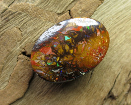 "21cts,""BOULDER MATRIX OPAL~FROM OUR MINES!"""