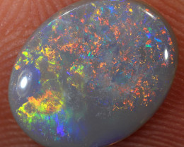 1.45ct 11x8.5mm Solid Lightning Ridge Dark Opal [LO-1389]