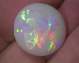 15.56ct MULTI PATERN EXTREEM BRIGHTRAINBOW COLORS OVAL OPAL