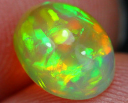 1.41Ct Top Bright 5/5 Saturated Pattern Ethiopian Welo Opal ~ D2505