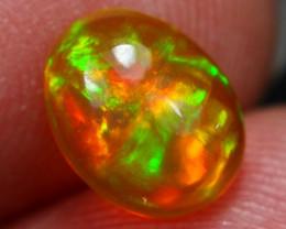 1.13Ct Top Bright 5/5 Multi Fire Pattern Ethiopian Welo Opal ~ D2515