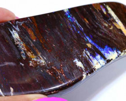 405CTS-BOULDER OPAL RARE PALM WOOD FOSSIL SPECIMENS FO-796