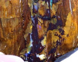 1123CTS-BOULDER OPAL RARE PALM WOOD FOSSIL  SPECIMENS FO-798