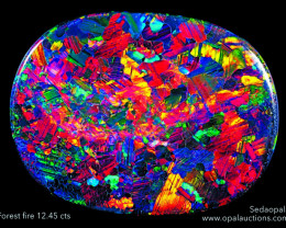 """ONE OPAL POSTERS """" FOREST FIRE"""" -QUALITY GLOSSY PAPER A4 SIZE"""