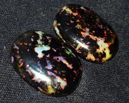 19.00 CRT 2PCS RIANBOW PIN FIRE INDONESIAN OPAL WOOD FOSSIL