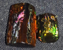 10 CRT 2 PCS BEAUTY WOOD FOSSIL WITH PLAY COLOR INDONESIAN OPAL WOOD FOSSIL