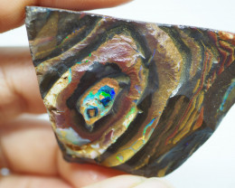 211.55CT ROUGH QUEENSLAND BOULDER OPAL  PJ41