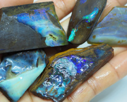379.15CT ROUGH QUEENSLAND BOULDER OPAL  PJ83