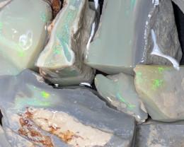 1700 Carats of Solid/Natural Lightning Ridge Rough Opal, #163