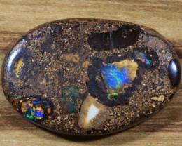18.45ct-RAINBOW LORIKEETS- Koroit Boulder Opal [20938]