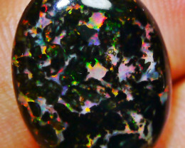 Gorgeous Indonesian Wood Fossil Opal Polished 8.45 CT