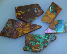 40.30 ct Koroit Boulder Opal Gem Multi Color Rough Parcel