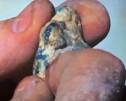 Opal hunetsr shows the opal found in its rough form and shows cutting of the gem