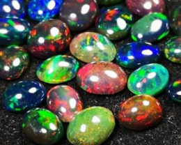 STUNING PARCELL WELO OPAL 20 PCS