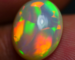 2.90 CRT AMAZING WELO CHAFF NEON PUZZLE HONEYCOMB PLAY COLOR WELO OPAL