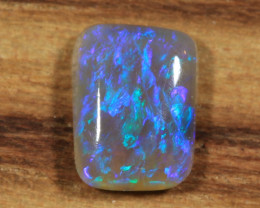 0.55ct -Dendrelaphis punctulata-Lightning Ridge Opal [21402]