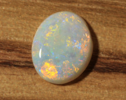 0.95ct-AFTER THE OUTBACK RAINS- LRidge Opal [21449]