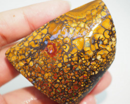 over250CT QUALITY ROUGH YOWAH BOULDER OPAL TB466
