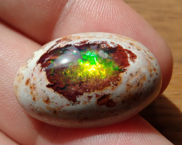25.25 cts Mexican Matrix Cantera Multicoloured Fire Opal