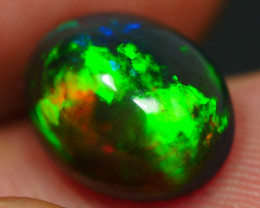 2.65 CRT BEUATY SMOKED HOLOGRAM BROAD FLASH NEON WELO OPAL*12