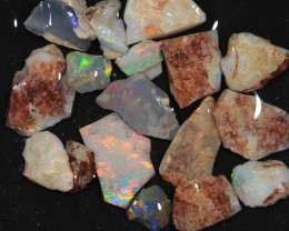 73ct  -2#  -  Gamble Rough from Lightning Ridge [21731]