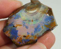 51.20CT ROUGH QUEENSLAND BOULDER OPAL AA579