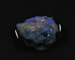 73ct  -5#  -  Gamble Rough from Lightning Ridge [21772]