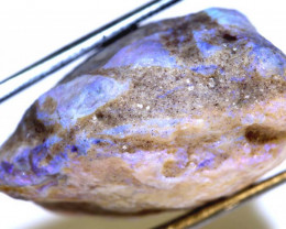 71.50 CTS -OPALISED CLAM SHELL  DT-3869