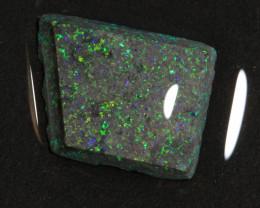 5.40ct  -6#  -  Andamooka Matrix Opal Rough-Treated [22293]