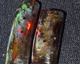 12.00 CRT BEAUTY NEON FLASH PLAY COLOR SPECIMENT INDONESIAN OPAL WOOD FOSSI