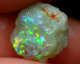 2.03cts Australian Lightning Ridge Opal Rough / AW331