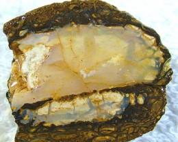 55 CTS [BM] OPAL YOWAH NUT    FJP 1796