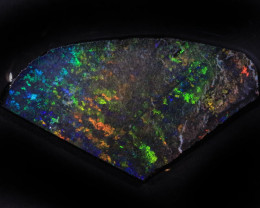 11.15ct  -1#  -  Andamooka Matrix Opal Rough-Treated [22849]