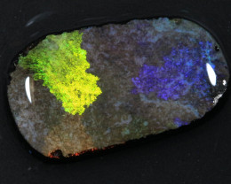19.70ct  -1#  -  Andamooka Matrix Opal Rough-Treated [22853]