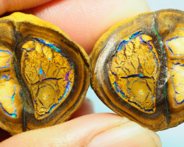 95.35CT COLLECTOR YOWAH BOULDER NUTS OPAL AL130