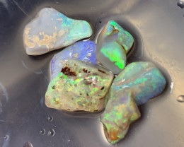 SELECTED TO CUT; 18 CTs of Lightning Ridge Rough Opal #1177