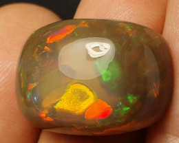 25ct Beautiful Blazing Welo Solid Opal
