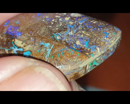 42.7 Boulder Opal from Winton