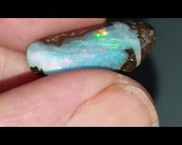 15.76 Boulder opal from Winton (JR)