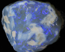 75ct  -5#  -  Gamble Rough from Lightning Ridge [23584]